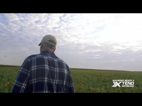Asgrow® Roundup Ready 2 Xtend® Soybeans