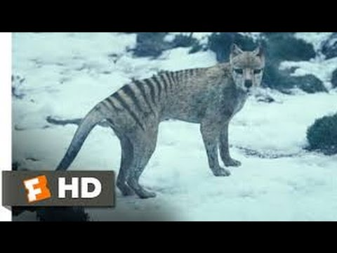 Extinct or Alive The Tasmanian Tiger (2016) with Forrest ...