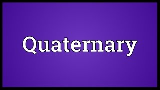 Quaternary Meaning