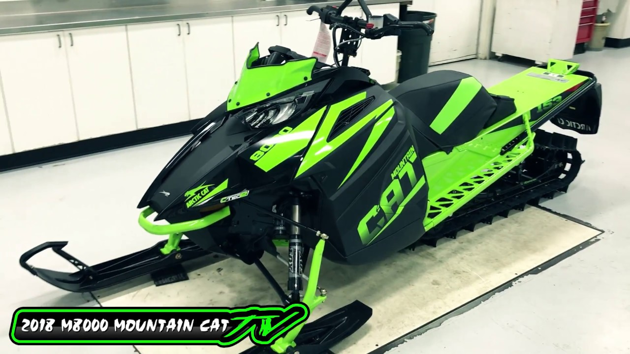 Mountain Cat  Review