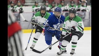 CWHL Down to Six Teams, Hefford Takes Over