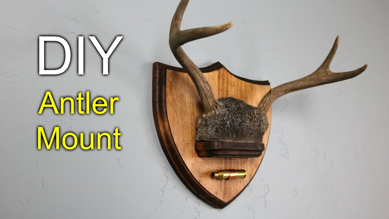 Diy antler mount how to make youtube for Turkey fan mount template
