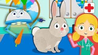 Jimmy, Das Kaninchen Besucht Dr. Poppy ' s Pet Rescue | Karikatur-Tiere Für Kinder