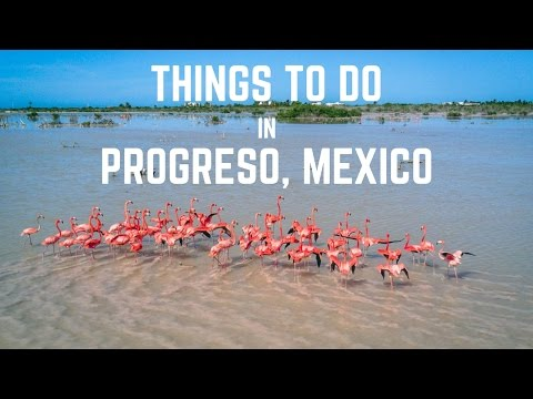 Things to do in Progreso, Yucatan, Mexico