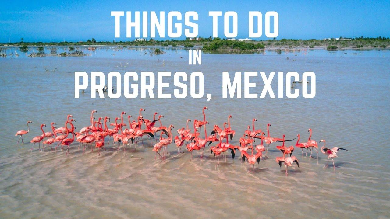 Things To Do In Progreso Yucatan Mexico Youtube