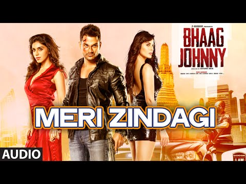 Meri Zindagi song lyrics