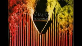 vitalic - terminator benelux