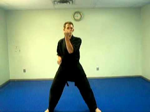 KENPO KARATE for BEGINNERS LESSON 1