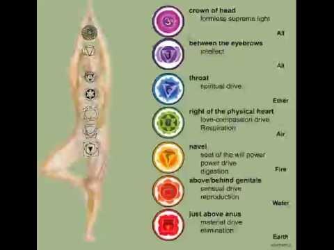Reiki Guide Tutorial Lessons - chi gong healing tai chi tao yoga sleep meditation