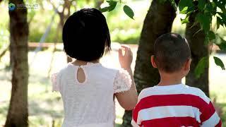 서구 분야별 홍보영상문화관광 국문