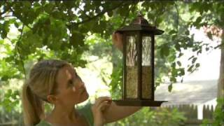 Video Perky Pet®  Suggested Seed Feeder Placement download MP3, 3GP, MP4, WEBM, AVI, FLV Juli 2018