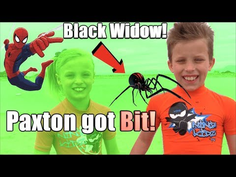 Paxton got bit  a BLACK WIDOW! HE is SPIDERMAN!