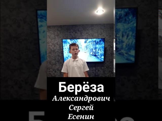 Изображение предпросмотра прочтения – МатвейАлексеев читает произведение «Берёза» С.А.Есенина