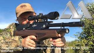 Download Video Airgun Hunting: Bird Shooting in South Africa with the Air Arms Galahad MP3 3GP MP4