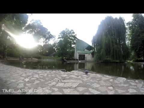 Vrnjacka banja, jezero, labud