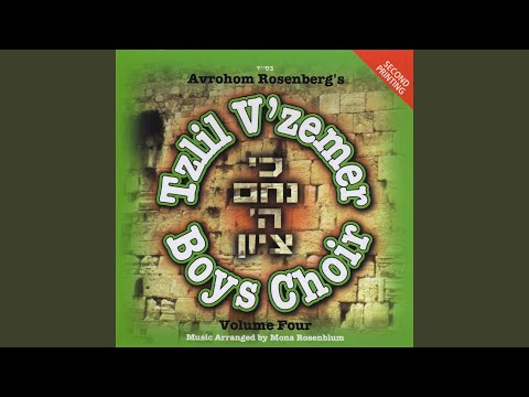 Top Tracks - Tzlil V'zemer Boys Choir