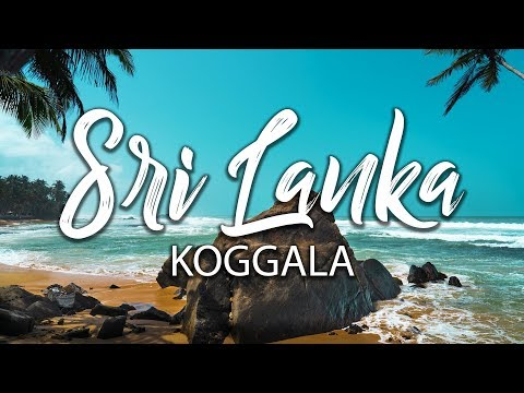 Follow me to Sri Lanka, a place for great food and tropical beaches