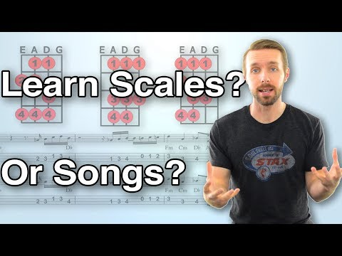 Should You Learn Scales On Bass Or Learn Songs/Bass Lines? A Roadmap For What To Learn And When