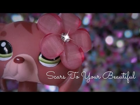 LPS MV~Scars To Your Beautiful
