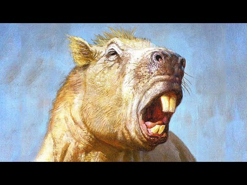 The Biggest Rodent That Ever Lived