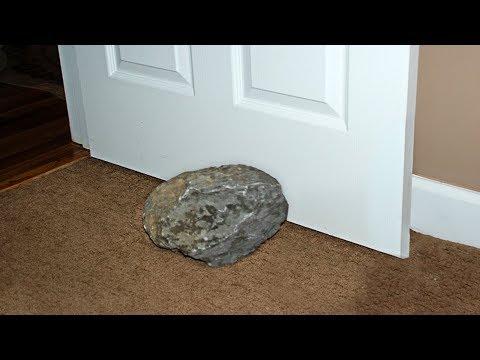 رجل استخدم هذا الحجر لإبقاء بابه مفتوحاً لمدة 30 عاما , حتى أخبره أحد العلماء بأنه ليس حجر بل هو ...  - نشر قبل 20 دقيقة