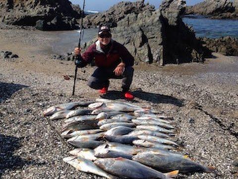 Pesca de Corvinas