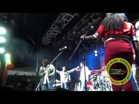 Lauryn Hill, Damian, Julian, & Stephen Marley @Nine Mile Festival