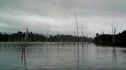 Suriname Kwana eiland