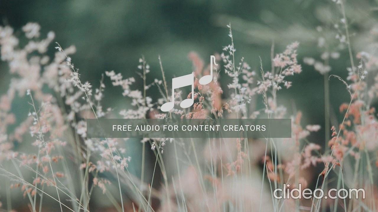 Morning Joe Free Audio Free Background Music Youtube