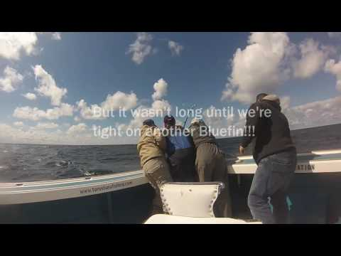 Bluefin Tuna Fishing, North Lake PEI