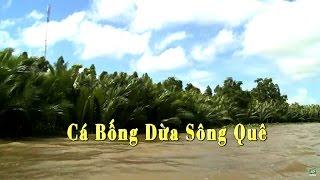 Ký ức miền quê   Cá bống dừa sông quê   THKG