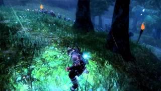 Viking Battle for Asgard PC gameplay HD 9800GTX