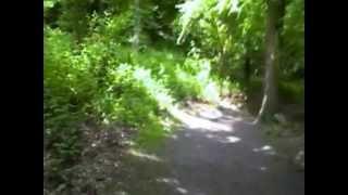 Beltane Sounds of Nature.avi