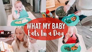 WHAT MY BABY EATS IN A DAY | 9 MONTHS OLD