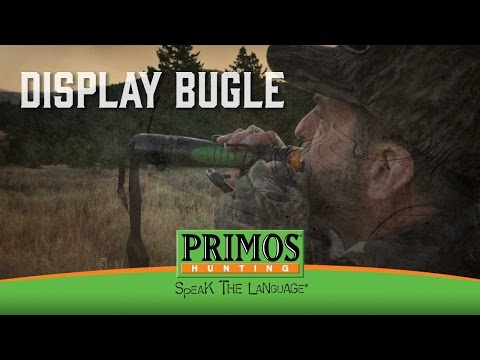 How to make the Display Bugle