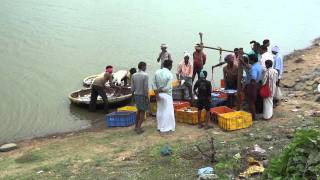 Fish Farming in Karnataka