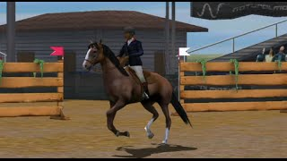My Horse Trainer Practice 3D Android İos  Free Game GAMEPLAY VİDEO