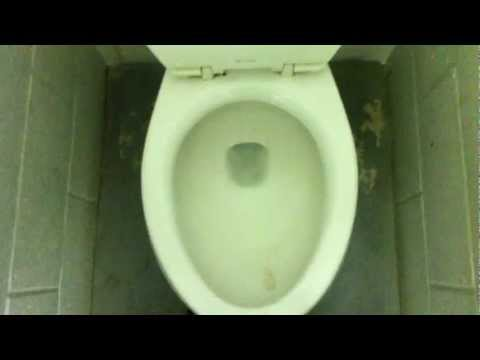 [252] Old Mansfield Baltic Toilet and Adam Urinal
