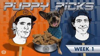 BATB 11: Puppy Picks Week 1