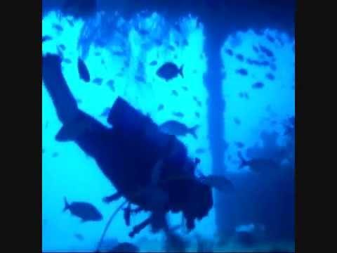 Vitale Wreck Dive 3-30-13-Dave