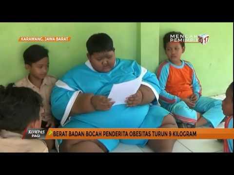 Obesogen: Momok Baru bagi Pelakon Anti-Obesitas