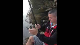 albani per gjueti