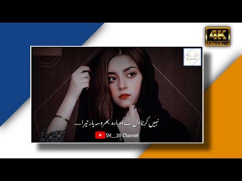 Bharosa Pyaar Tera OST - Full Song Lyrics - 4K Video!