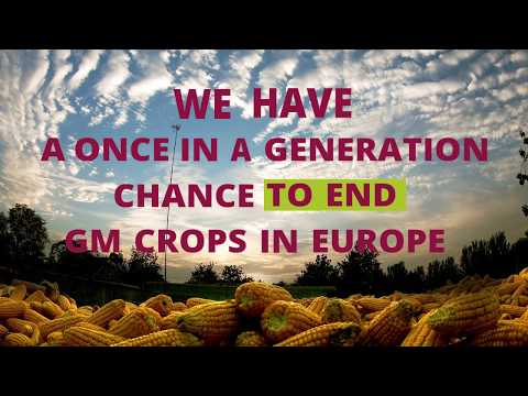 Once-in-a-generation chance to ban GM crops in Europe