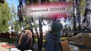 ЗООПАРК   Тюменский зоопарк   Аквапарк Лето-лето   Развлечения в Тюмени. Часть вторая