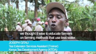 Addressing climate change in Kenya's tea sector - ITC