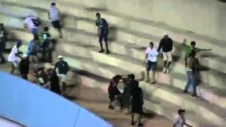 Briga entre torcedores do Goiás e Figueirense no Serra Dourada - 04/10/2014