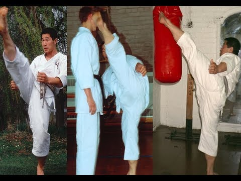 Shotokan Karate Kicking Exercise