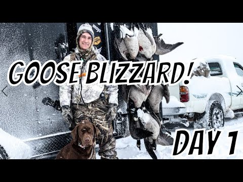 GOOSE BLIZZARD 2019 (DAY 1) - Hunt The Front In Colorado!