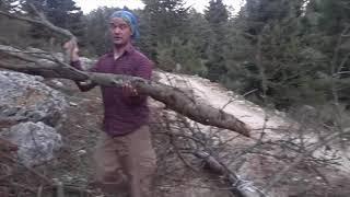 Kamp ateşine araba ile kolayca odun taşıma